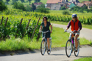 På cykelrejse i Alsace