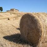 Vindistriktet Chianti er en del af Toscana