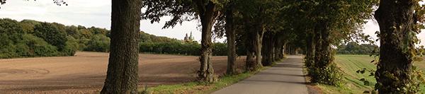 Cykelrejser i Danmark med Memory Tours