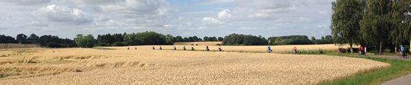 At cykle i cyklisternes paradis Danmark